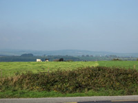 Countryside between Thomastown and Waterford