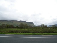 Countryside just North of Sligo