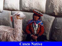 Cusco Native